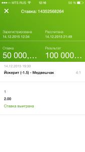 yokerit_medveshchak